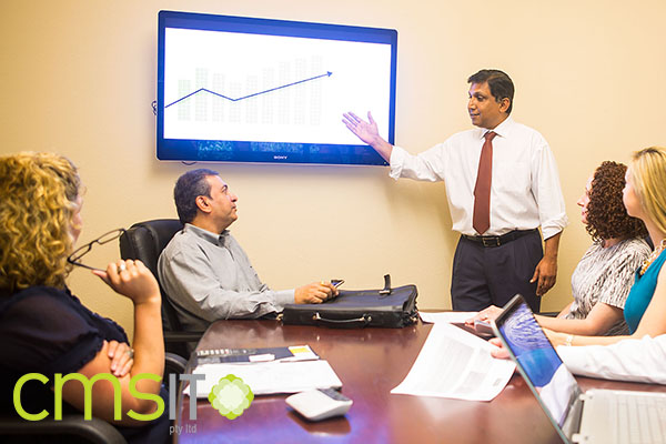 Upgrade Productivity and Performance Levels through Managed Information Technology Services - CMS IT